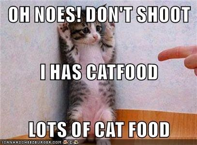 Cat - OH NOES! DON'T SHOOT I HAS CATFOOD LOTS OF CAT FOOD ICANHASCHEEZEURGER.COM