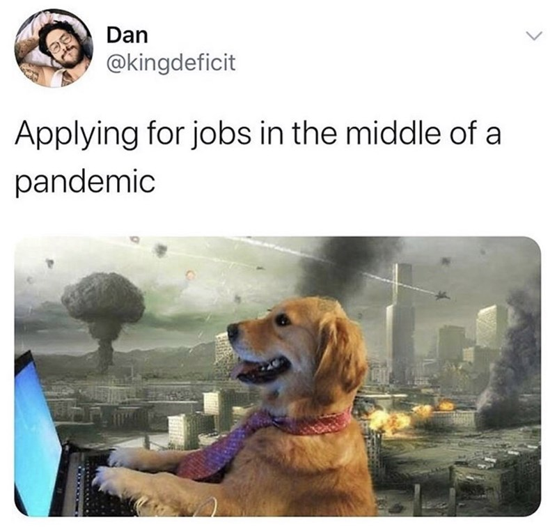 "Funny meme that reads, ""Applying for jobs in the middle of a pandemic"" above an image of a golden retriever typing on a computer with an apocalypse happening in the background"