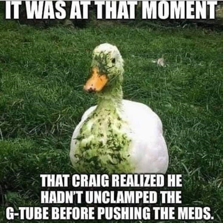 Duck - IT WAS AT THAT MOMENT THAT CRAIG REALIZED HE HADN'T UNCLAMPED THE G-TUBE BEFORE PUSHING THE MEDS.