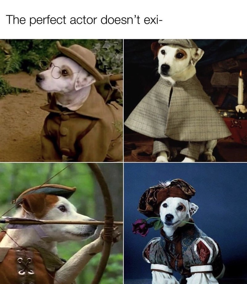 Vertebrate - The perfect actor doesn't exi-