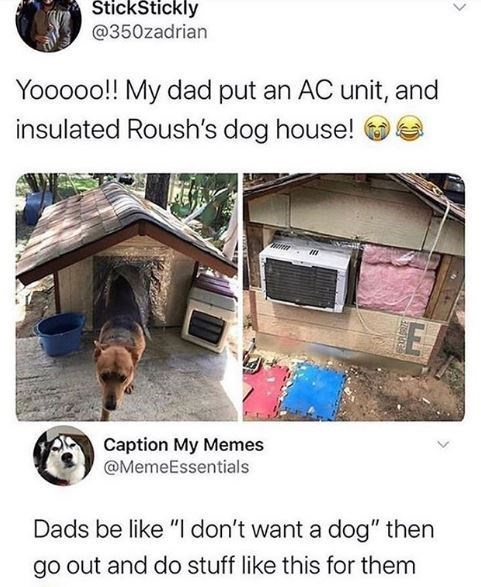 """Adaptation - ŠtickStickly @350zadrian Yooooo!! My dad put an AC unit, and insulated Roush's dog house! Caption My Memes @MemeEssentials Dads be like """"I don't want a dog"""" then go out and do stuff like this for them"""