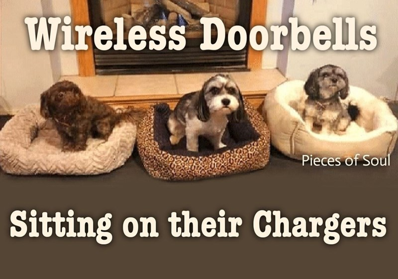 Dog - Wireless Doorbells Pieces of Soul Sitting on their Chargers