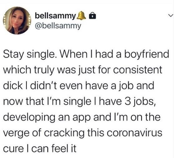 Text - bellsammy. @bellsammy Stay single. When I had a boyfriend which truly was just for consistent dick I didn't even have a job and now that l'm single I have 3 jobs, developing an app and l'm on the verge of cracking this coronavirus cure I can feel it