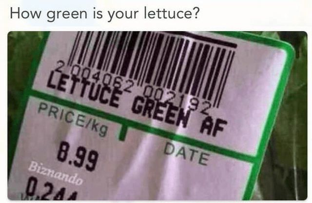 Text - How green is your lettuce? 2 004062 002192 CETTÚČE GREEN AF PRICE/kg DATE 8.99 Biznando 0,24