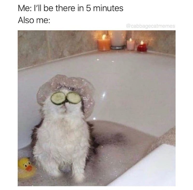 Photo caption - Me: I'll be there in 5 minutes Also me: @cabbagecatmemes