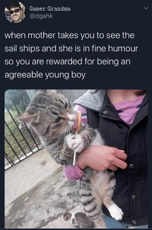 Cat - Cat - Gamer Grandma @dgahk when mother takes you to see the sail ships and she is in fine humour so you are rewarded for being an agreeable young boy