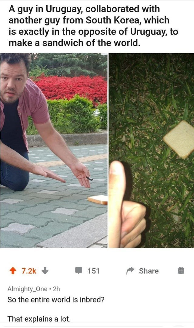 Grass - A guy in Uruguay, collaborated with another guy from South Korea, which is exactly in the opposite of Uruguay, to make a sandwich of the world. 7.2k 151 Share Almighty_One 2h So the entire world is inbred? That explains a lot.