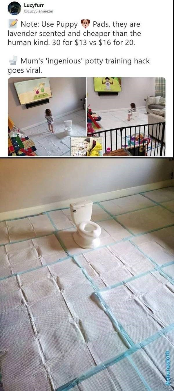 Floor - Lucyfurr @LucySiameezer Note: Use Puppy lavender scented and cheaper than the human kind. 30 for $13 vs $16 for 20. Pads, they are Mum's 'ingenious' potty training hack goes viral.