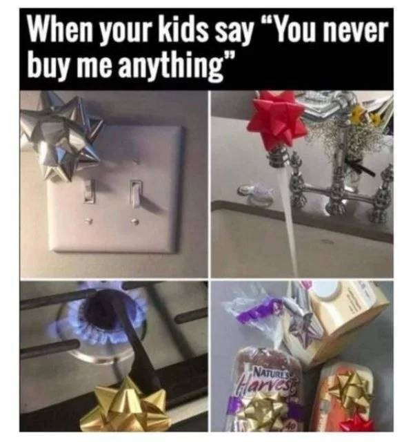 """Plant - When your kids say """"You never buy me anything"""" NATURES Harvess"""