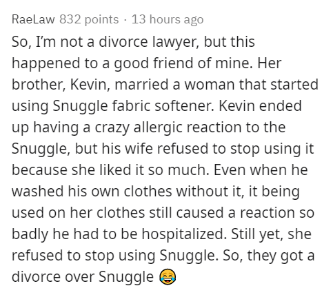 Text - Raelaw 832 points · 13 hours ago So, I'm not a divorce lawyer, but this happened to a good friend of mine. Her brother, Kevin, married a woman that started using Snuggle fabric softener. Kevin ended up having a crazy allergic reaction to the Snuggle, but his wife refused to stop using it because she liked it so much. Even when he washed his own clothes without it, it being used on her clothes still caused a reaction so badly he had to be hospitalized. Still yet, she refused to stop using