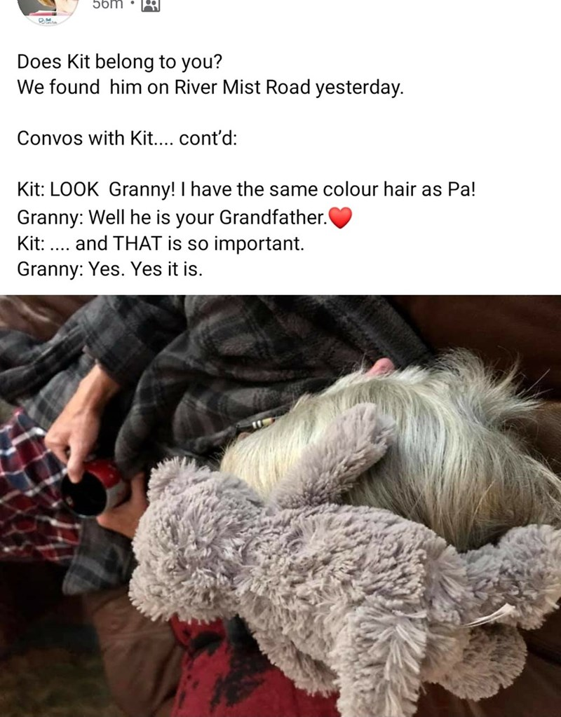 Fur - 56m Does Kit belong to you? We found him on River Mist Road yesterday. Convos with Kit.... cont'd: Kit: LOOK Granny! I have the same colour hair as Pa! Granny: Well he is your Grandfather. Kit: ... and THAT is so important. Granny: Yes. Yes it is.