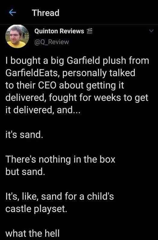 Text - Thread Quinton Reviews @Q_Review I bought a big Garfield plush from GarfieldEats, personally talked to their CEO about getting it delivered, fought for weeks to get it delivered, and... it's sand. There's nothing in the box but sand. It's, like, sand for a child's castle playset. what the hell