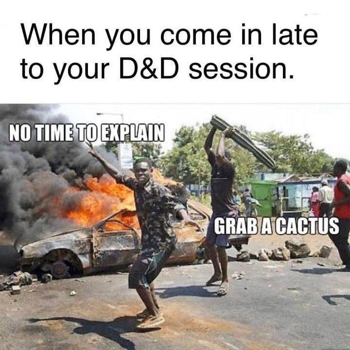 Photo caption - When you come in late to your D&D session. NO TIME TO EXPLAIN GRAB A CACTUS