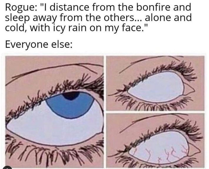"""Eyebrow - Rogue: """"I distance from the bonfire and sleep away from the others... alone and cold, with icy rain on my face."""" Everyone else:"""
