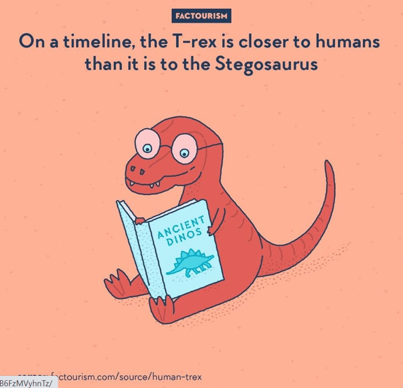 Text - FACTOURISM On a timeline, the T-rex is closer to humans than it is to the Stegosaurus ANCIENT DINOS B6FzMVyhnTz/ ctourism.com/source/human-trex