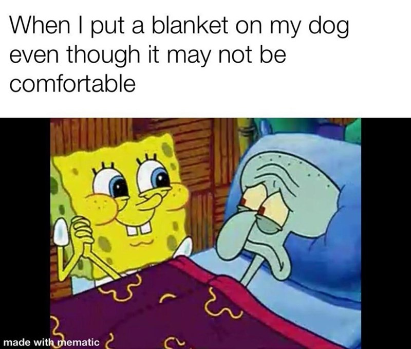 Cartoon - Cartoon - When I put a blanket on my dog even though it may not be comfortable made with mematic e