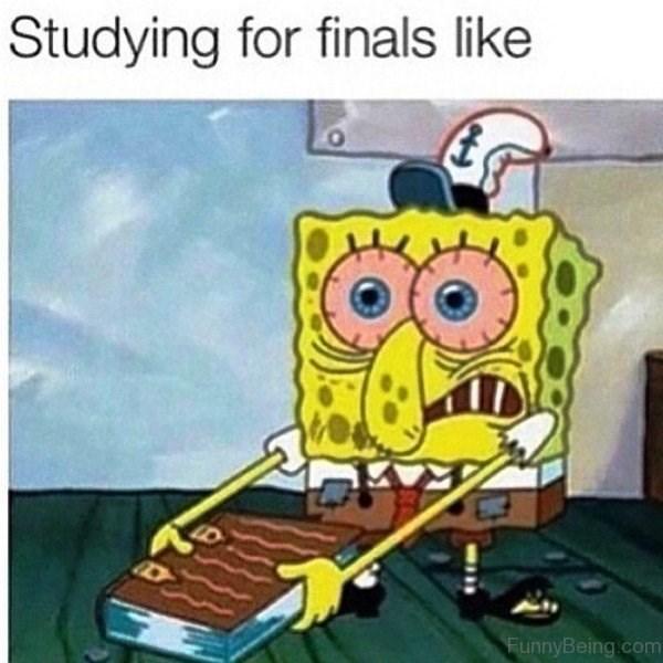 Cartoon - Cartoon - Studying for finals like FunnyBeing.com