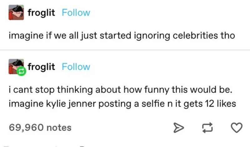 Text - froglit Follow imagine if we all just started ignoring celebrities tho froglit Follow i cant stop thinking about how funny this would be. imagine kylie jenner posting a selfie n it gets 12 likes 69,960 notes