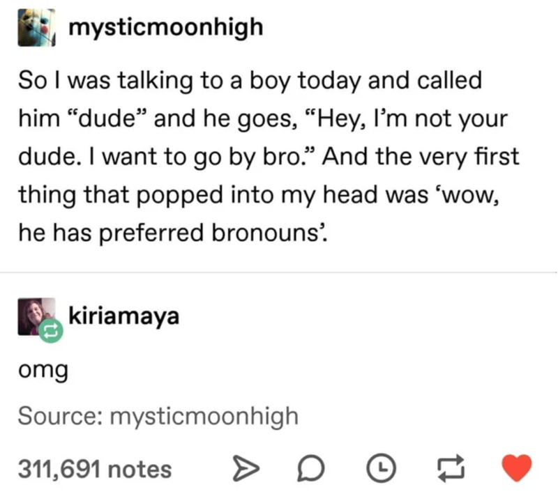 """Text - Text - mysticmoonhigh So I was talking to a boy today and called him """"dude"""" and he goes, """"Hey, I'm not your dude. I want to go by bro."""" And the very first thing that popped into my head was 'wow, he has preferred bronouns'. kiriamaya omg Source: mysticmoonhigh 311,691 notes > L"""