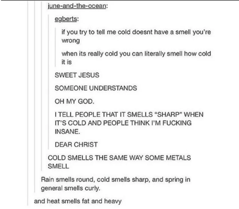 """Text - Text - june-and-the-ocean: egberts: if you try to tell me cold doesnt have a smell you're wrong when its really cold you can literally smell how cold it is SWEET JESUS SOMEONE UNDERSTANDS OH MY GOD. I TELL PEOPLE THAT IT SMELLS """"SHARP"""" WHEN IT'S COLD AND PEOPLE THINK I'M FUCKING INSANE. DEAR CHRIST COLD SMELLS THE SAME WAY SOME METALS SMELL Rain smells round, cold smells sharp, and spring in general smells curly. and heat smells fat and heavy"""
