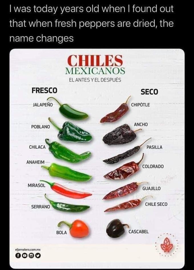 Food group - I was today years old when I found out that when fresh peppers are dried, the name changes CHILES MEXICANOS EL ANTES Y EL DESPUĖS FRESCO SECO JALAPEÑO CHIPOTLE ANCHO POBLANO CHILACA PASILLA ANAHEIM COLORADO MIRASOL GUAJILLO CHILE SECO SERRANO BOLA CASCABEL eljornalero.com.mx 0000
