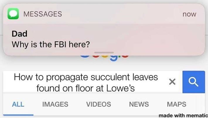Text - MESSAGES now Dad Why is the FBI here? How to propagate succulent leaves found on floor at Lowe's ALL IMAGES VIDEOS NEWS МAPS made with mematic