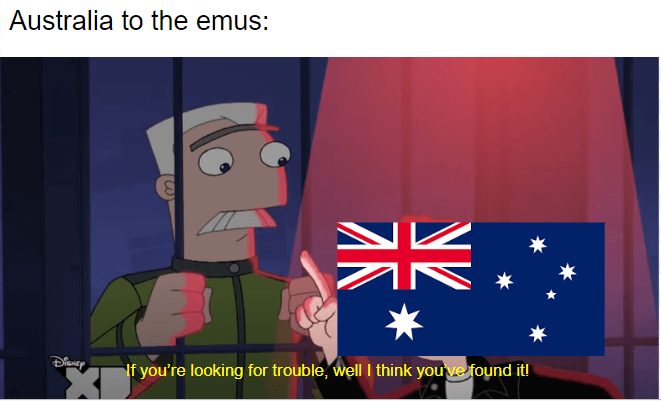 Cartoon - Australia to the emus: * If you're looking for trouble, well I think youve found it! 米