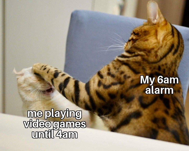 Cat - My 6am alarm me playing video games until 4am