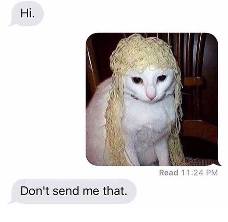 Cat - Hi. Read 11:24 PM Don't send me that.