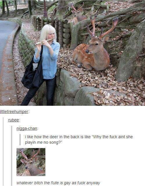 "Adaptation - littletreehumper rubee: nigga-chan: i like how the deer in the back is like ""Why the fuck aint she playin me no song?"" whatever bitch the flute is gay as fuck anyway"