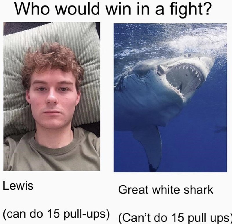 Jaw - Who would win in a fight? Lewis Great white shark (can do 15 pull-ups) (Can't do 15 pull ups)