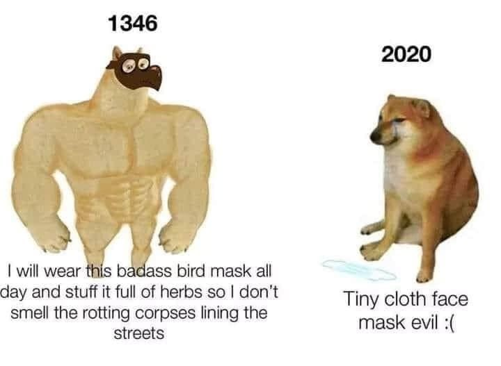 Wildlife - 1346 2020 I will wear this badass bird mask all day and stuff it full of herbs so I don't smell the rotting corpses lining the Tiny cloth face mask evil :( streets