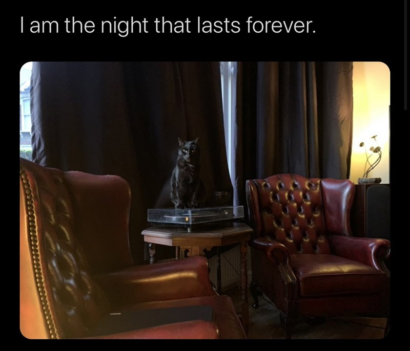 Room - | am the night that lasts forever.