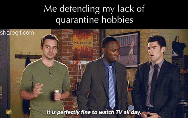 Photo caption - Me defending my lack of quarantine hobbies sharegif.com METROPOLIS It is perfectly fine to watch TV all day.