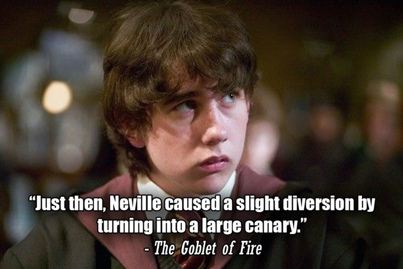 """Photo caption - """"Just then, Neville caused a slight diversion by turning into a large canary."""" The Goblet of Fire"""