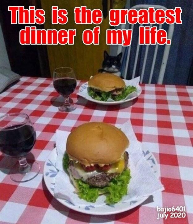Cheezburger Image 9524378880