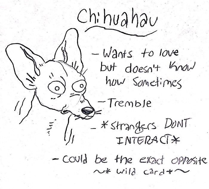 Text - Ch: huahau -Wants to love but doesn't Know how Sometimes - Tremble * Strangers DONT INTERA CTX COuld be the exact OPPosite v* wild card+~