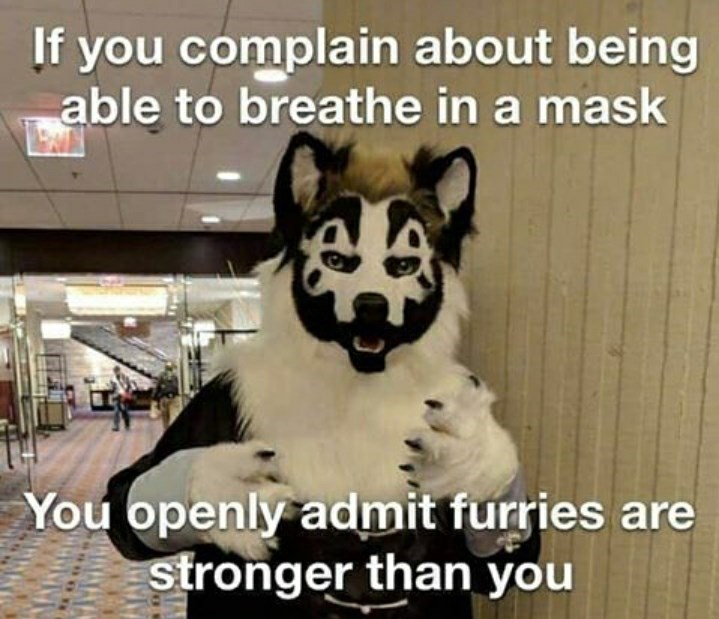 Mammal - If you complain about being able to breathe in a mask You openly admit furries are stronger than you
