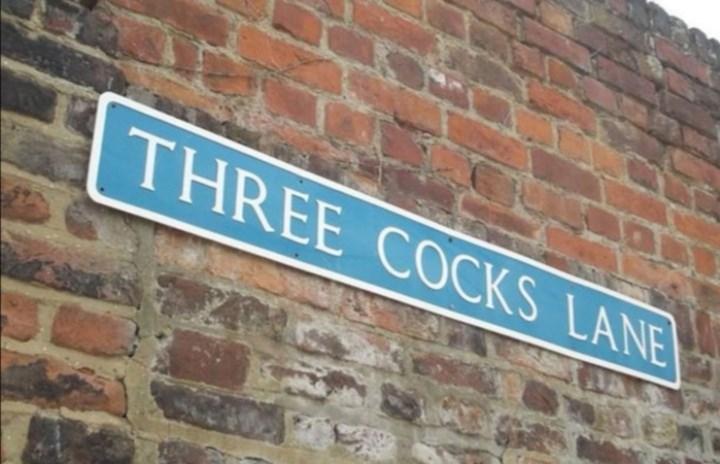 Brickwork - THREE COCKS LANE