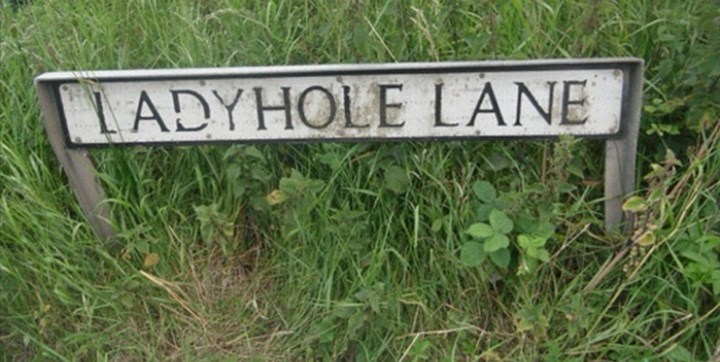 Grass - LADYHOLE LANE