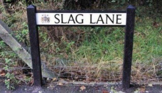 Nature - * SLAG LANE