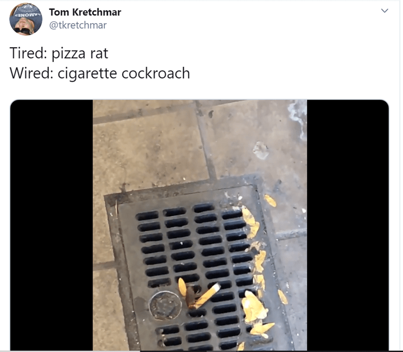 cockroach with a cigarette