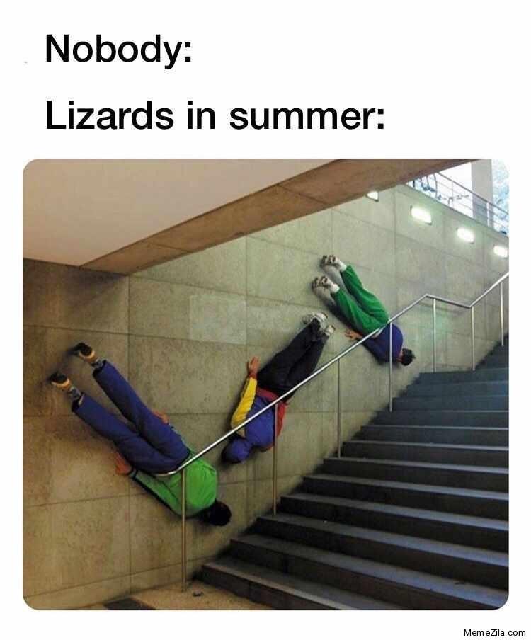 Design - Nobody: Lizards in summer: MemeZila.com