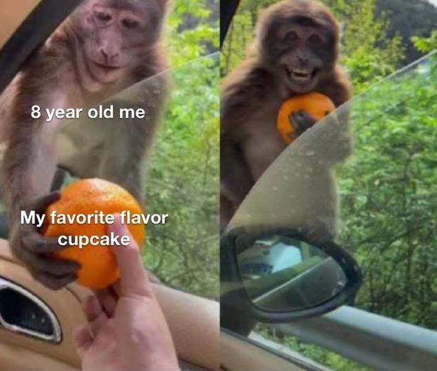 Primate - 8 year old me My favorite flavor cupcake