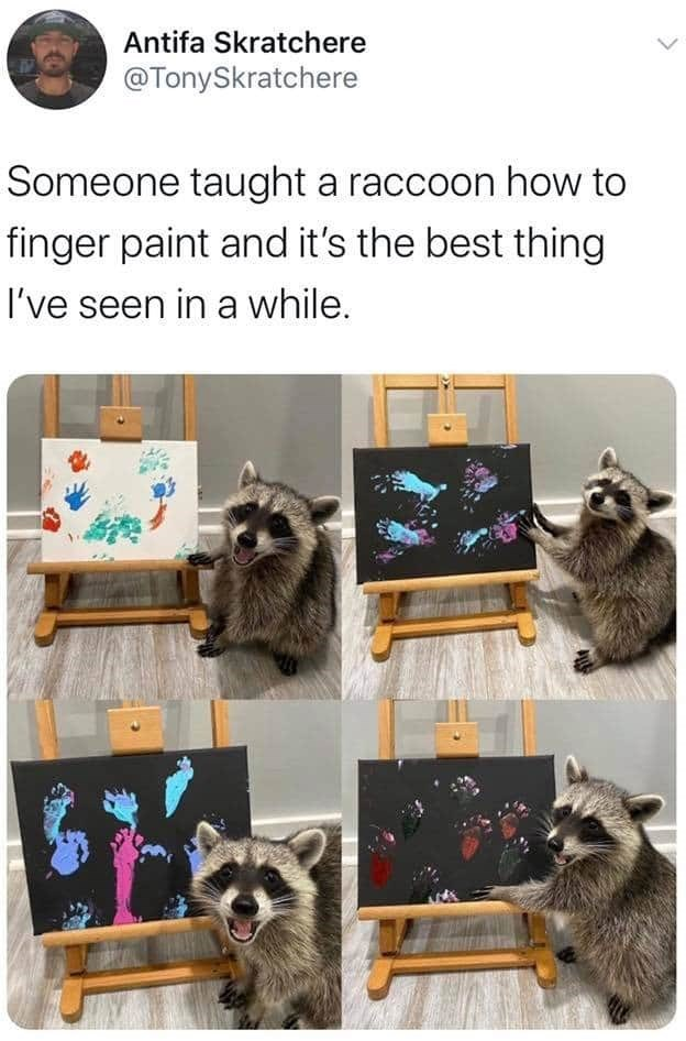Adaptation - Photography - Antifa Skratchere @TonySkratchere Someone taught a raccoon how to finger paint and it's the best thing I've seen in a while.