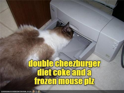 Cheezburger Image 9526588672