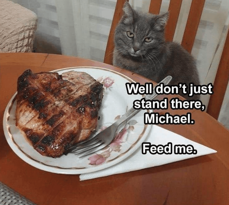 Food - Well don't just stand there, Michael. Feed me.