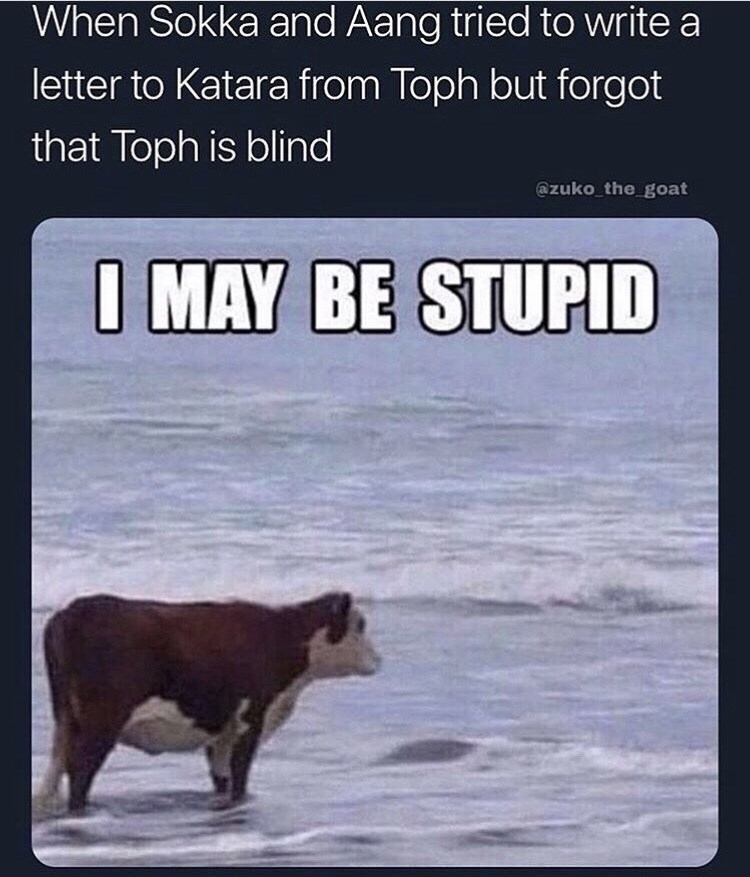 Bear - When Sokka and Aang tried to write a letter to Katara from Toph but forgot that Toph is blind @zuko the goat I MAY BE STUPID