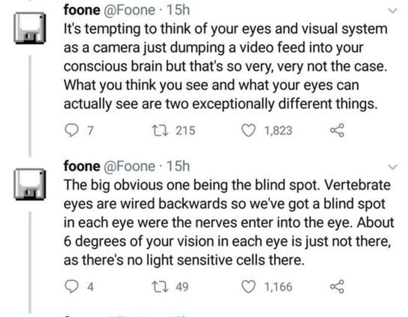 Text - foone @Foone 15h It's tempting to think of your eyes and visual system as a camera just dumping a video feed into your conscious brain but that's so very, very not the case. What you think you see and what your eyes can actually see are two exceptionally different things. 7 27 215 1,823 foone @Foone 15h The big obvious one being the blind spot. Vertebrate eyes are wired backwards so we've got a blind spot in each eye were the nerves enter into the eye. About 6 degrees of your vision in ea
