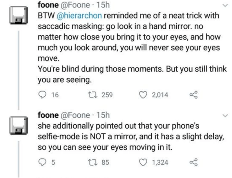 Text - foone @Foone · 15h BTW @hierarchon reminded me of a neat trick with saccadic masking: go look in a hand mirror. no matter how close you bring it to your eyes, and how much you look around, you will never see your eyes move. You're blind during those moments. But you still think you are seeing. 16 27 259 2,014 foone @Foone 15h she additionally pointed out that your phone's selfie-mode is NOT a mirror, and it has a slight delay, so you can see your eyes moving in it. 17 85 1,324